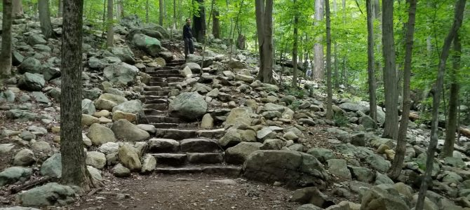 5 kids friendly hiking trails in NJ
