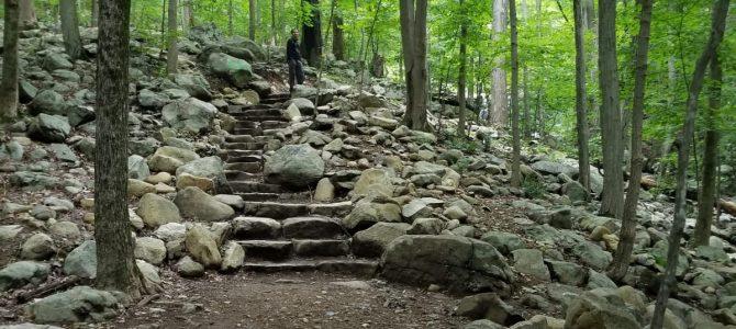 5 Best Kid Friendly Hiking Trails in NJ